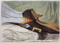 This page Paraphilia is part of the human sexuality seriesIllustration: Fashionable Contrasts (1792) by James Gillray.