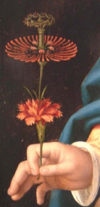 Flower (16th century) by Joos van Cleve from Madonna and Child