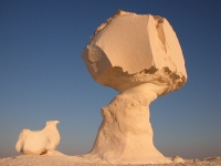 Limestone rock formation in the White Desert, Egypt  Back to nature!