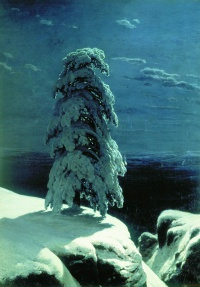 In the Wild North (1891) is a painting by Ivan Shishkin, in the collection of the Kiev Museum of Russian Art.