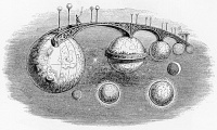 Interplanetary Bridge, Surrealism avant la lettre from Un autre monde (1844) by Grandville